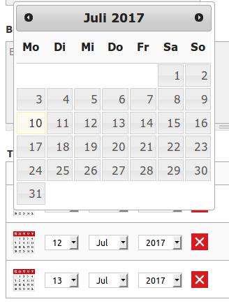 Ansicht Kalender in Termino